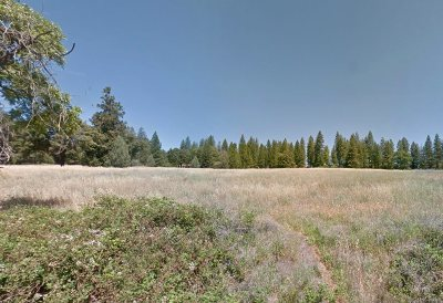 Volcano Residential Lots & Land For Sale: 19625 Hale Road