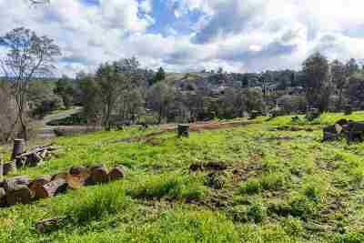 Sutter Creek Residential Lots & Land For Sale: 110 Raylan Drive