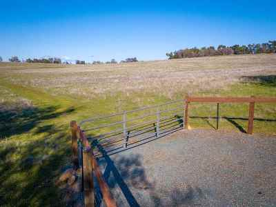 Sutter Creek Residential Lots & Land For Sale: 12541 Old Ridge Rd.