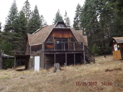 Amador County Single Family Home For Sale: 26641 High Trees Dr.