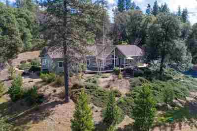 Jackson Single Family Home For Sale: 19850 Clinton Road