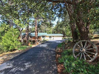 Pioneer Single Family Home For Sale: 25053 Buckhorn Ridge Rd