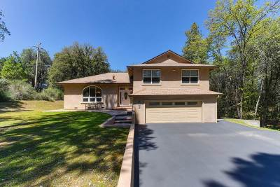 Pine Grove Single Family Home For Sale: 18777 Sugar Pine Drive S