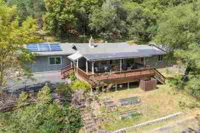 Jackson Single Family Home For Sale: 20050 Meadowood Drive