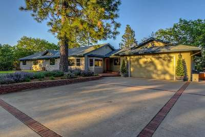 Pine Grove Single Family Home For Sale: 20240 Lookout Road