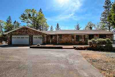Pine Grove Single Family Home For Sale: 11091 Tabeaud Rd