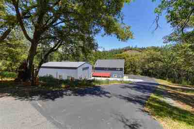 Pine Grove Single Family Home For Sale: 19121 Mineral Ridge Court