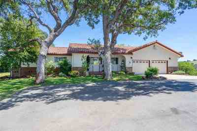 Drytown CA Single Family Home For Sale: $600,000
