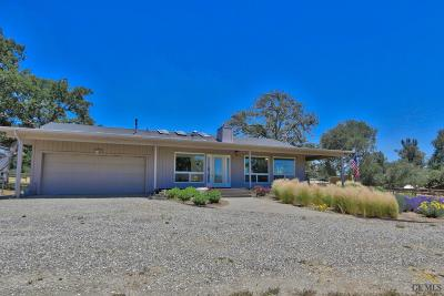 Tehachapi Single Family Home For Sale: 24200 Serra Place