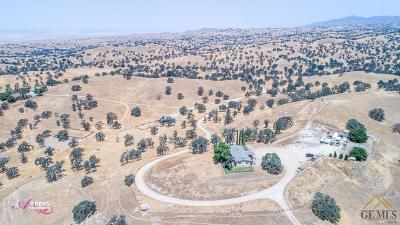 Bakersfield Single Family Home For Sale: 10250 Granite Road