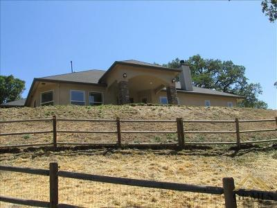 Tehachapi Single Family Home For Sale: 29321 Greenwater Drive