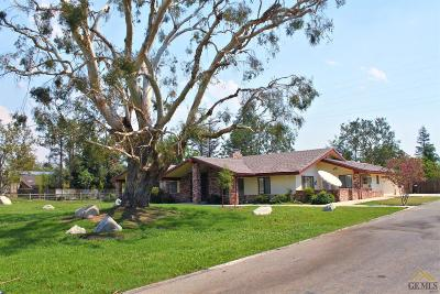 Bakersfield Single Family Home For Sale: 6742 Coffee Road