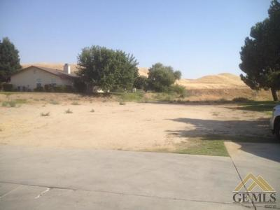 Bakersfield Residential Lots & Land For Sale: 16120 Match Pointe Court