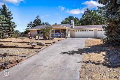 Tehachapi Single Family Home For Sale: 18000 Hambletonian Drive