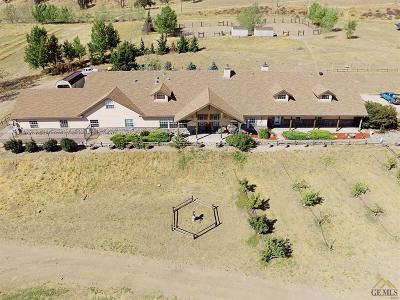 Tehachapi Single Family Home For Sale: 23237 Johnson Court