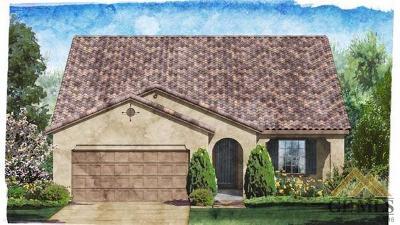 Bakersfield Single Family Home For Sale: 9905 Dutchman Peak Lane