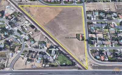 Bakersfield Residential Lots & Land For Sale: 3201 Jewetta Avenue
