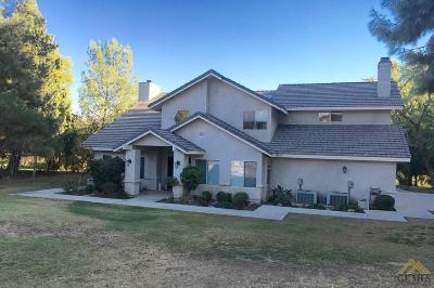 Bakersfield Single Family Home For Sale: 9601 Yamas Court