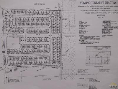 Bakersfield Residential Lots & Land For Sale: Valley/Paladino 386-040-13 Drive
