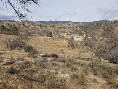 Residential Lots & Land For Sale: 9993 Caliente Creek Road