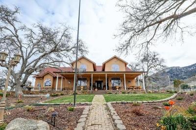 Tehachapi Single Family Home For Sale: 17700 Buckpasser Place