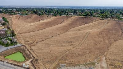 Bakersfield Residential Lots & Land For Sale: Apn 146-011-23