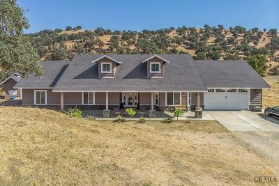 Tehachapi Single Family Home For Sale: 19081 Mustang Drive