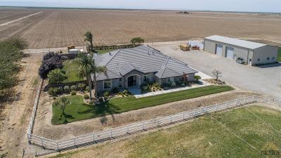 Bakersfield Single Family Home For Sale: 26251 Old River Road