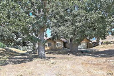 Tehachapi Single Family Home For Sale: 18100 Tejon Drive