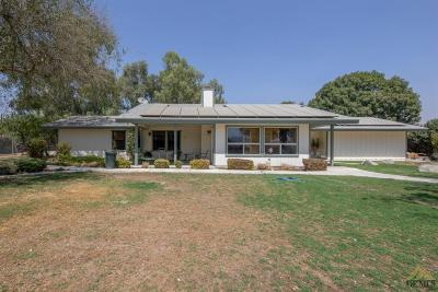 Bakersfield Single Family Home For Sale: 11112 Round Mountain Road