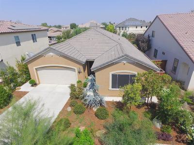 Bakersfield Single Family Home For Sale: 10402 Mustang Peak Drive