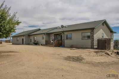 Tehachapi Single Family Home For Sale: 28840 Skyline Drive