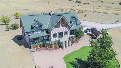 Tehachapi Single Family Home For Sale: 21837 Log Home Way