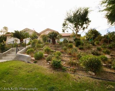 Single Family Home For Sale: 13601 Duccio Drive