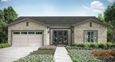 Bakersfield Single Family Home For Sale: 5901 Hawthorne Tree Lane