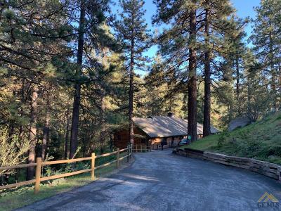 Tehachapi Single Family Home For Sale: 26261 Paramount Drive