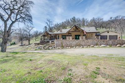 Single Family Home For Sale: 9225 Hwy 155