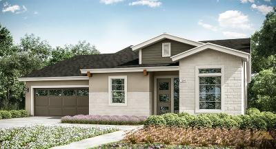 Single Family Home For Sale: 6507 Wild Olive Court