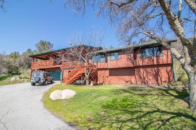 Tehachapi Single Family Home For Sale: 24301 Rowel Court