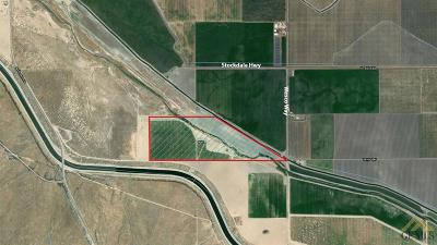 Farm & Ranch For Sale: Stockdale Hwy & Wasco Way