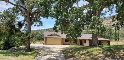 Tehachapi Single Family Home For Sale: 24321 Bay Court