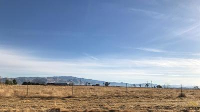 Bakersfield Residential Lots & Land For Sale: 12246 Cosmo Drive
