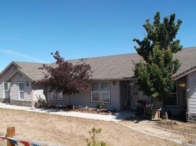 Tehachapi Single Family Home For Sale: 26751 Skyline Drive