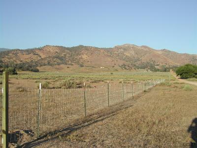 Residential Lots & Land For Sale: Dworken Road