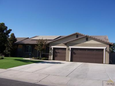 Bakersfield Single Family Home For Sale: 10600 Valle De Erro Lane