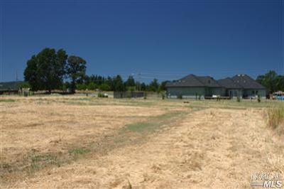 Lakeport Residential Lots & Land For Sale: 1200 Oak Park Way