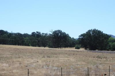 Lower Lake Residential Lots & Land For Sale: 10825 Clayton Creek Road