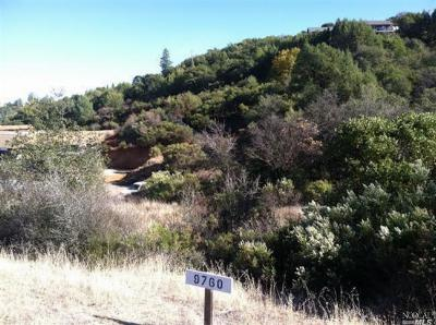 Kelseyville Residential Lots & Land For Sale: 9760 State Highway 281 Highway