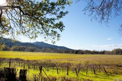 St. Helena Residential Lots & Land For Sale: 3683 Silverado Trail North