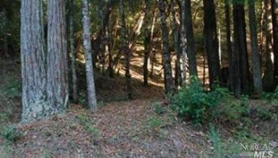 Willits Residential Lots & Land For Sale: 27821 Bear Drive